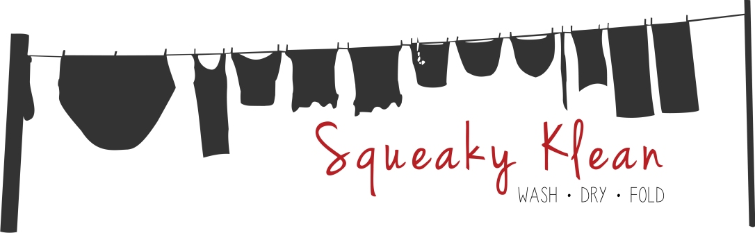 Squeaky Klean Laundry